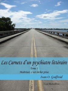 Les Carnets d'un psychiatre littéraire. Tome 1. Maîtriser, c'est lâcher prise